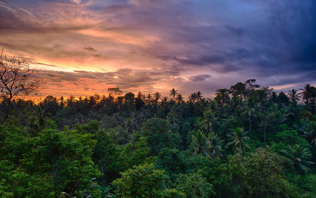 Best Bali Attractions To Enjoy On Your Luxury Holiday